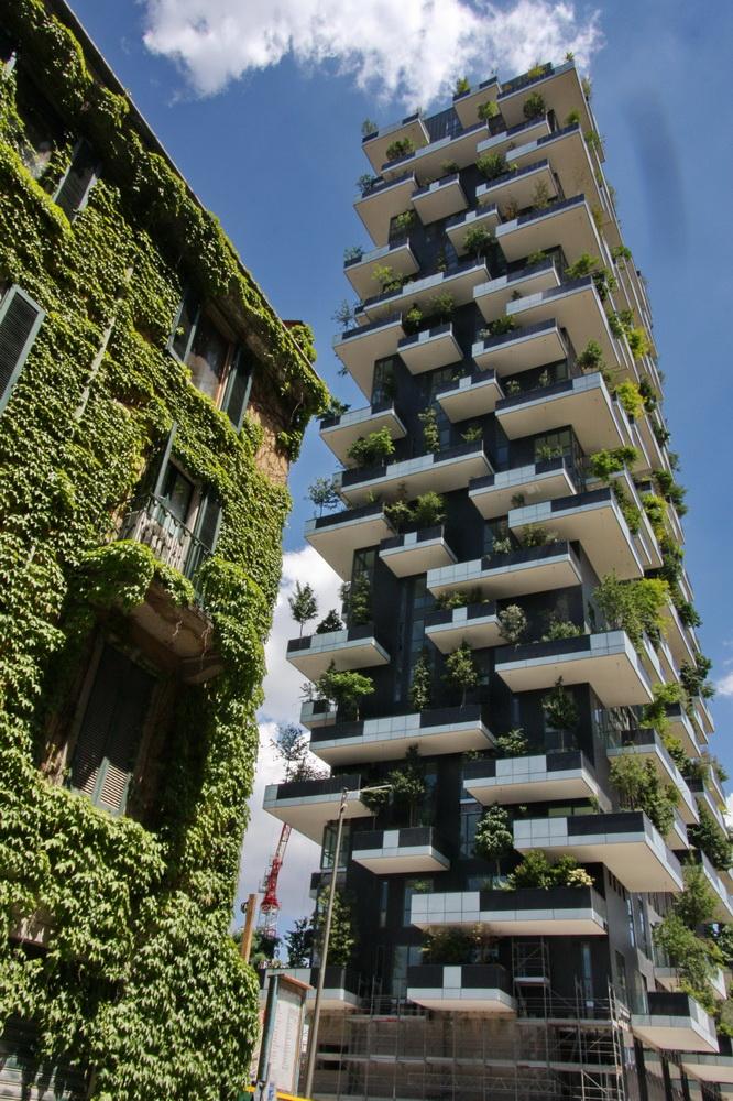 bosco verticale milano isola skyscraper milan architecture
